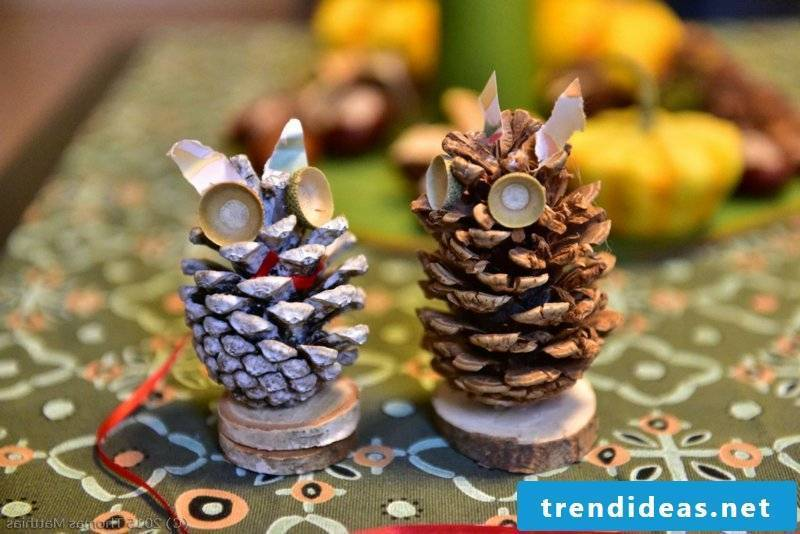 Tinker with pine cones two owls