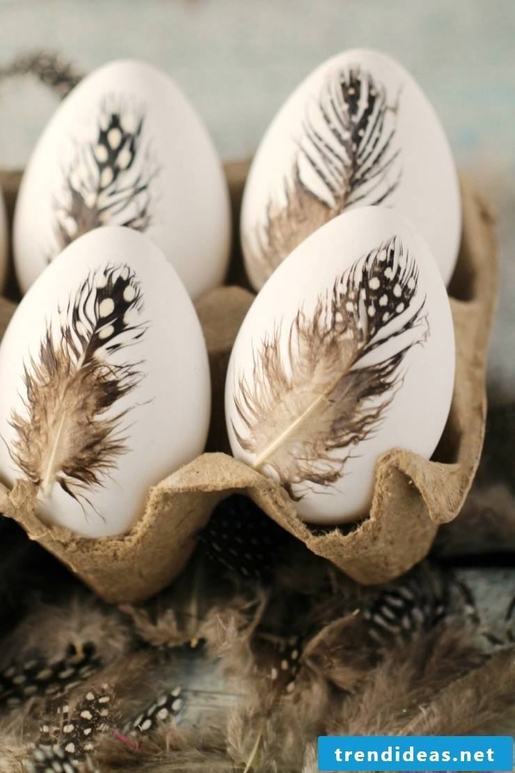 Coloring the Fifth Technique for Easter Eggs with No Color - Decorate your eggs with bird feathers