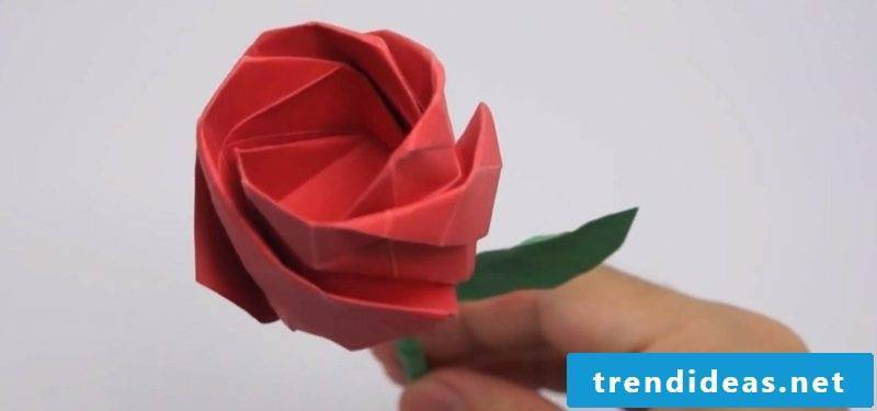 origami rose instruction fold lifelike