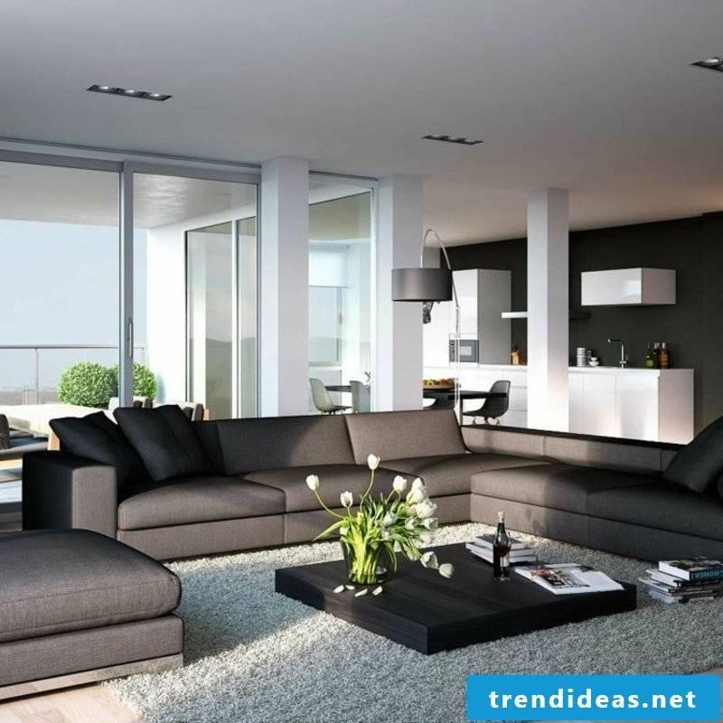 Living room dark interior