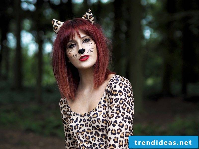 Cat costume with the hairstyle