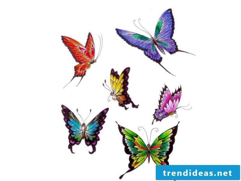 Tattoo butterfly template
