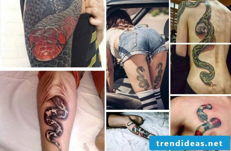 Choose the right place for your snake tattoo