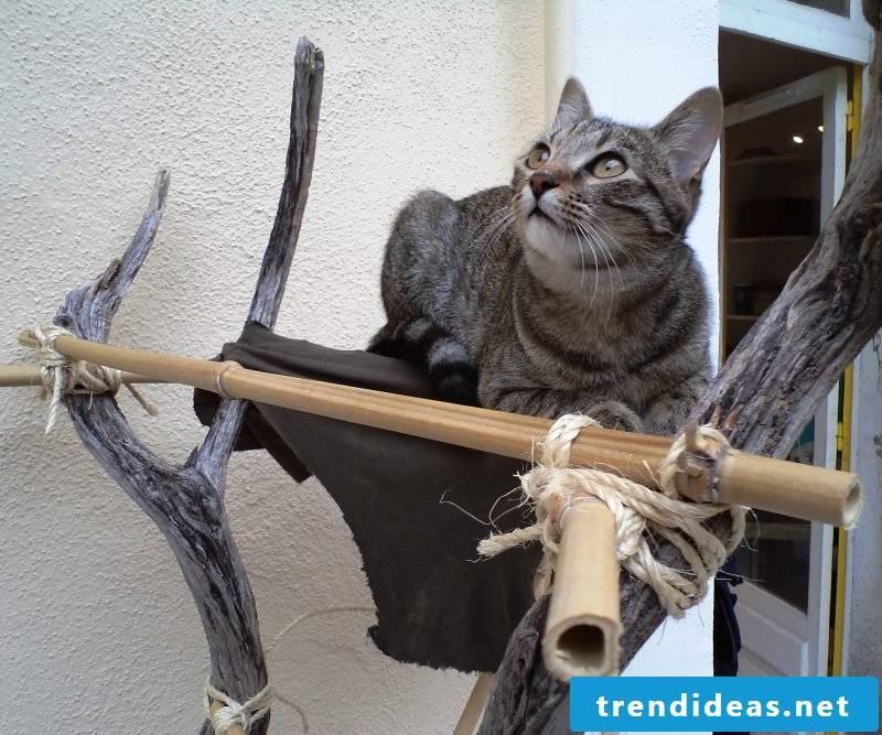 Cat furniture natural tree