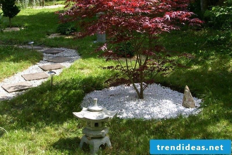 Zen garden landscape