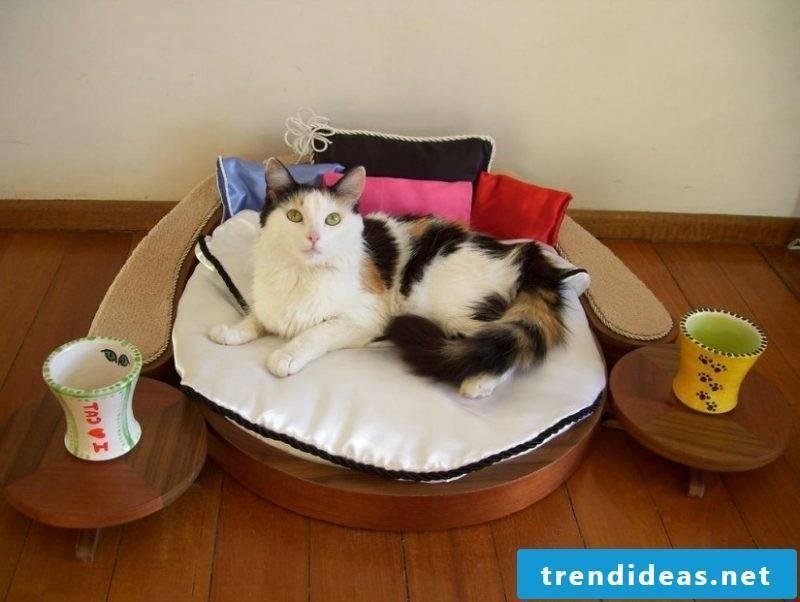 Cat furniture bed