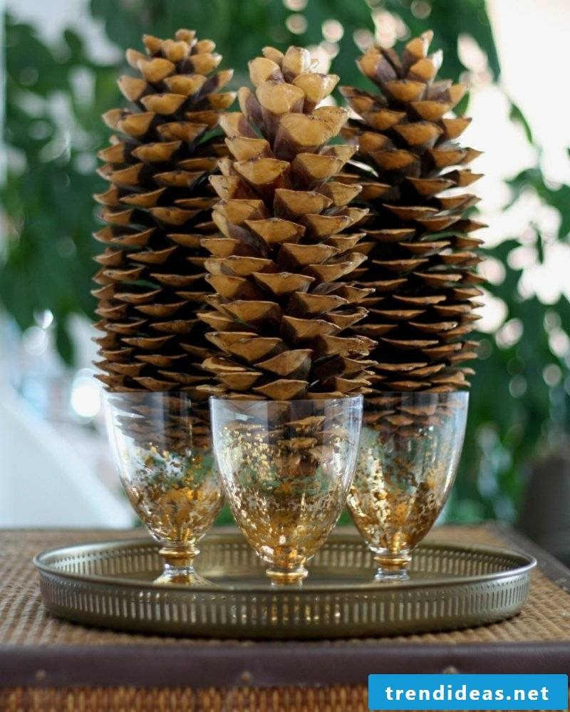 Tinker with pinecone great ideas