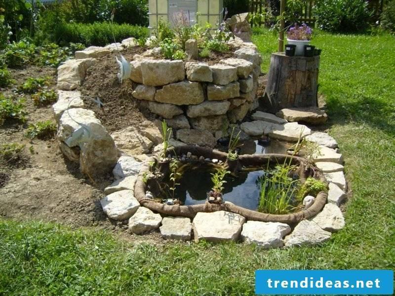 Herbal snail attractive dekoratver pond