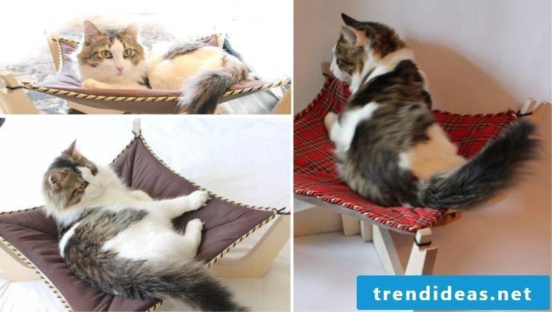 Cat furniture Cat bed