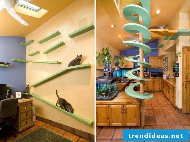 Cat furniture kitchen