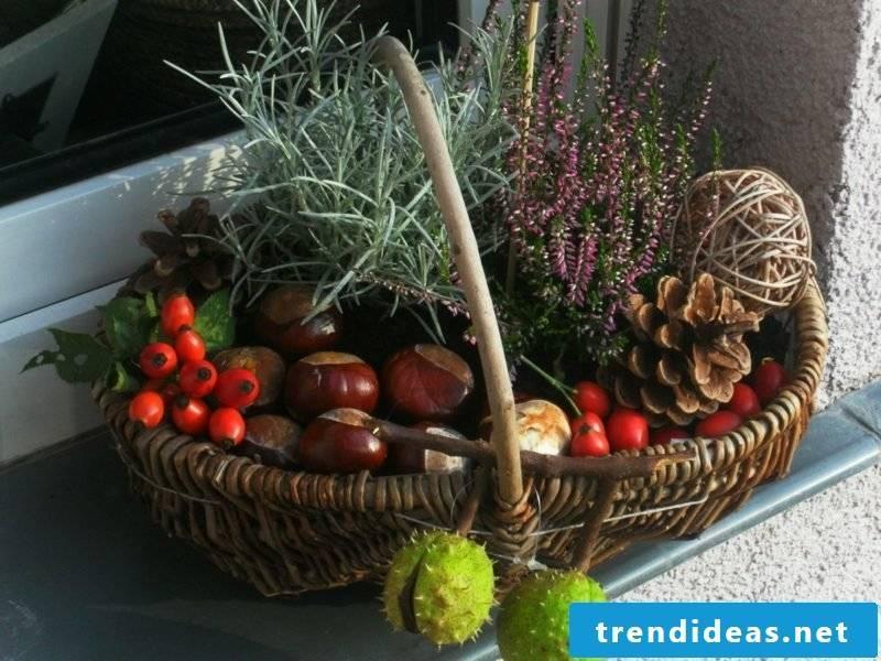 Autumn decoration for the entrance patio basket chestnut pinecone