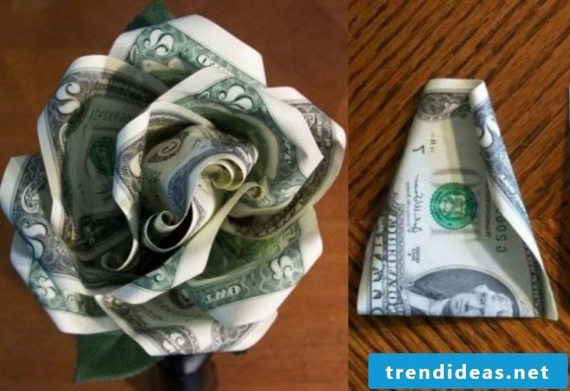 Banknote rose