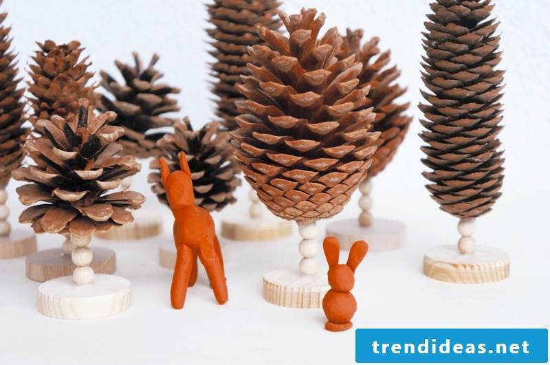 Be creative with pine cones