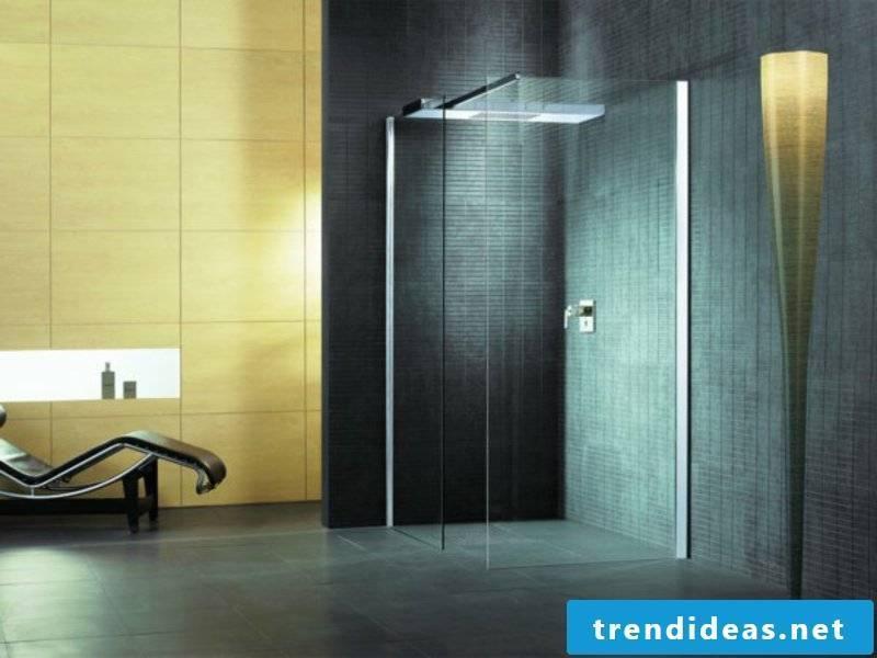 dark walls and glass shower cabin in bathroom design