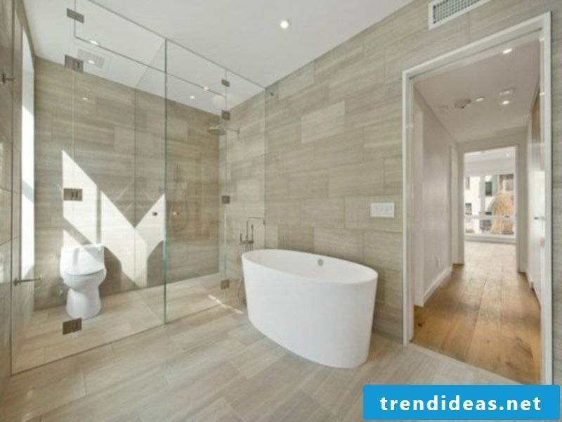 small bathroom and glass elements
