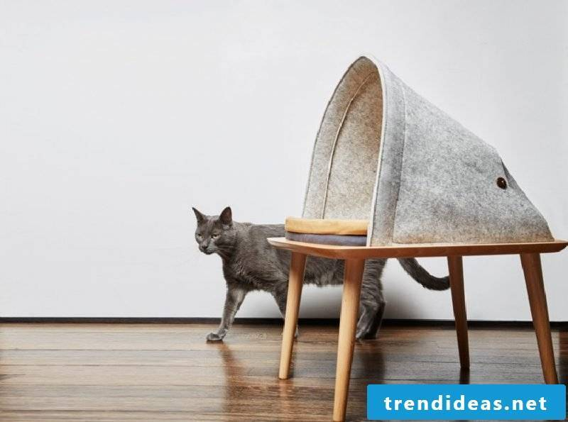 Cat furniture table bed