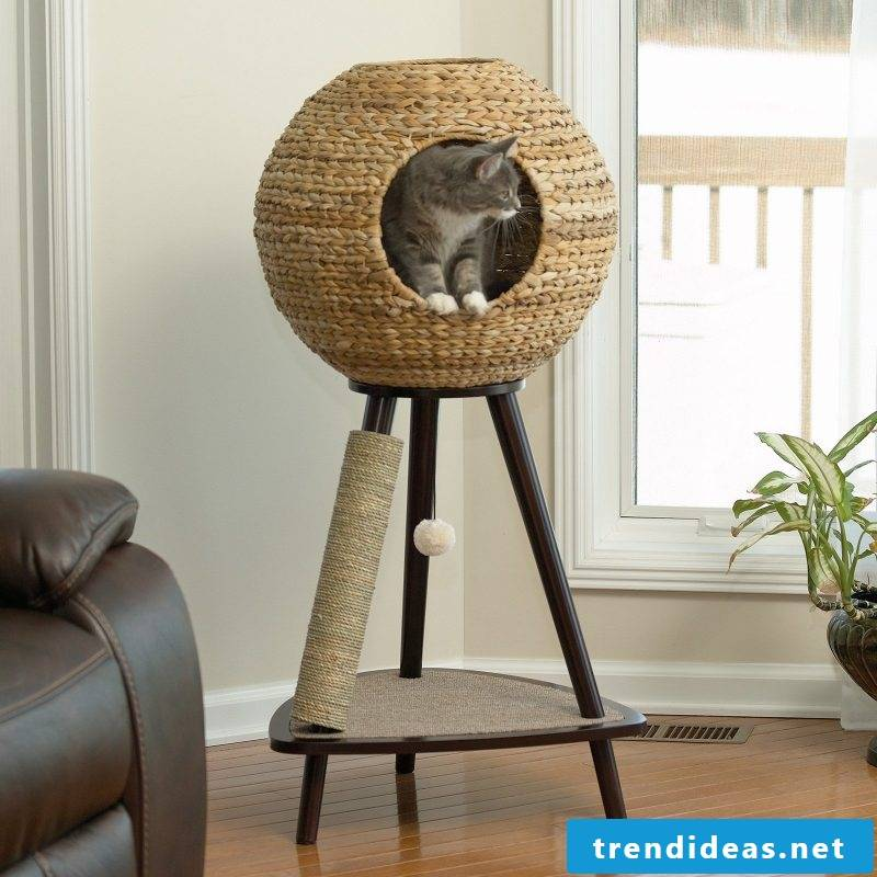 Cat furniture design