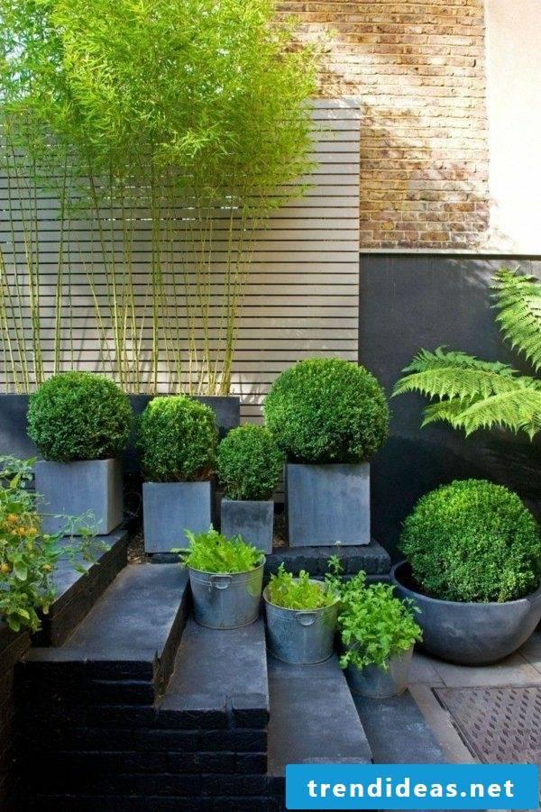 planting cubicle park