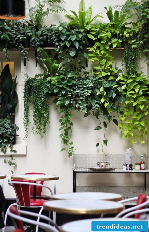 planter creative