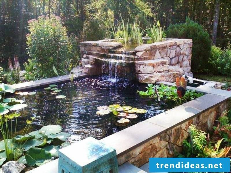 Pond with aquatic plants and creek landscaping