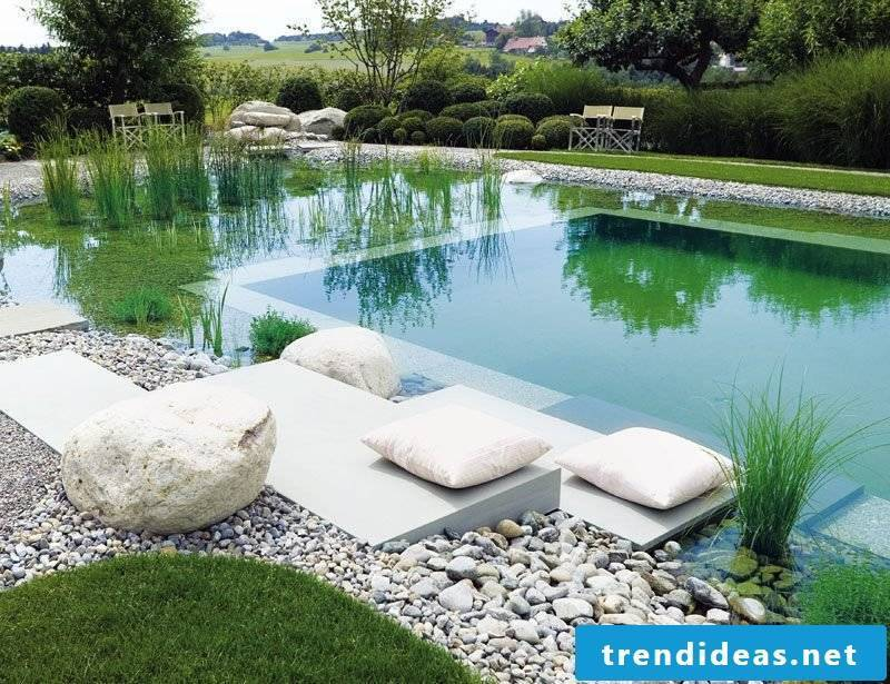 swim pond build yourself dreamlike