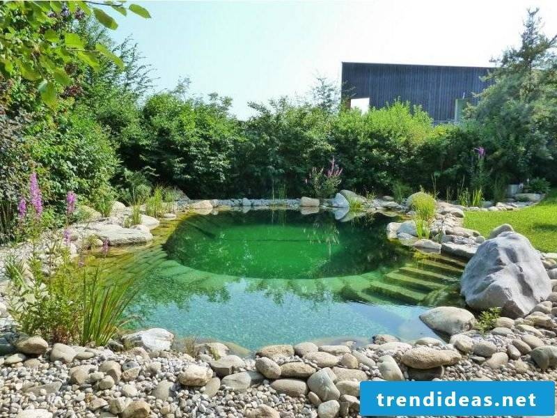 swim pond build fairy tale yourself