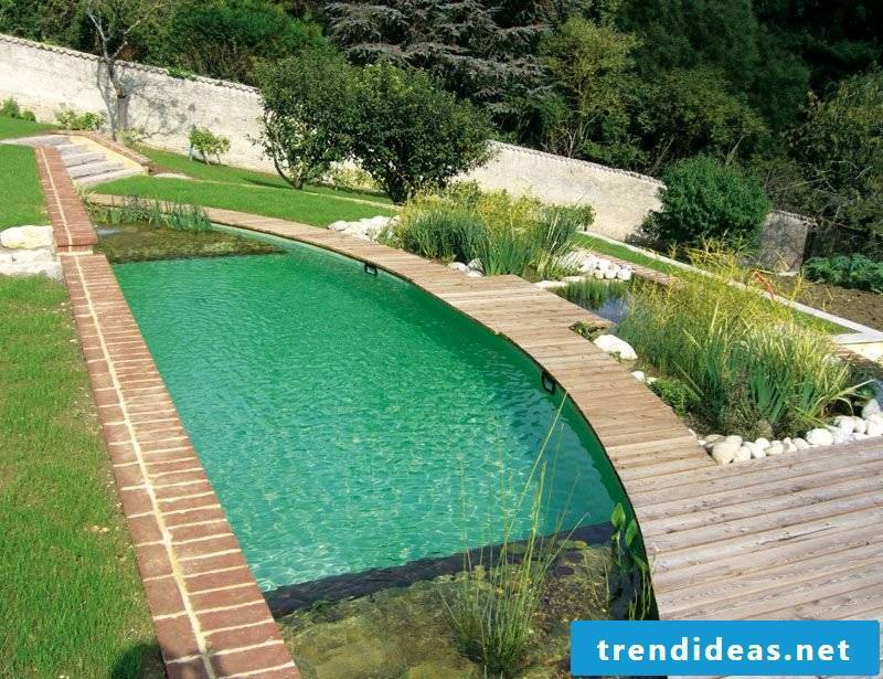 Swimming pond itself build reassuring