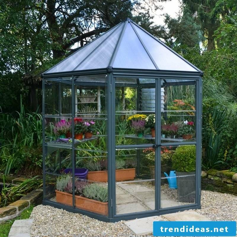 Greenhouse small DIY