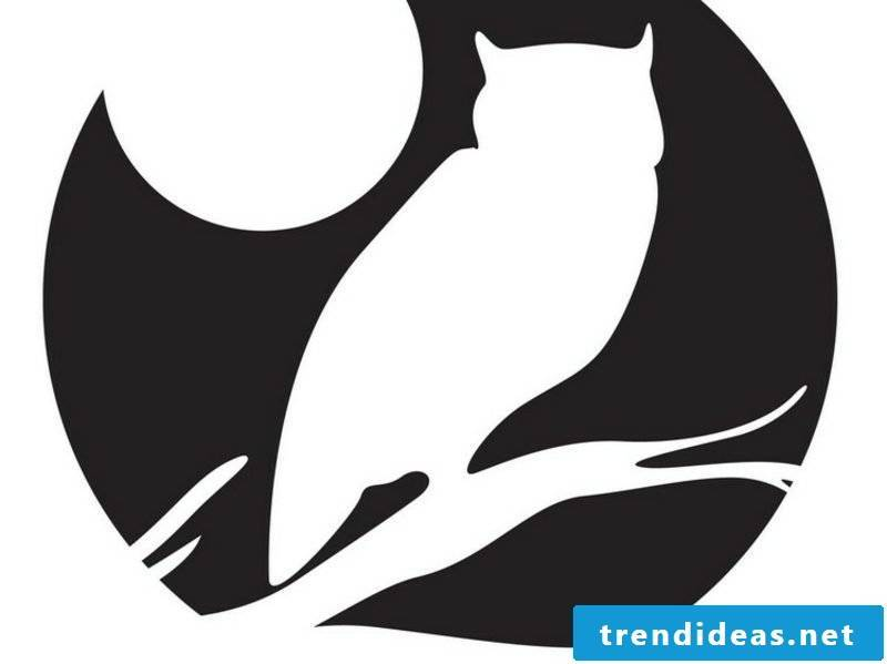 Halloween pumpkin carving templates Moon owl