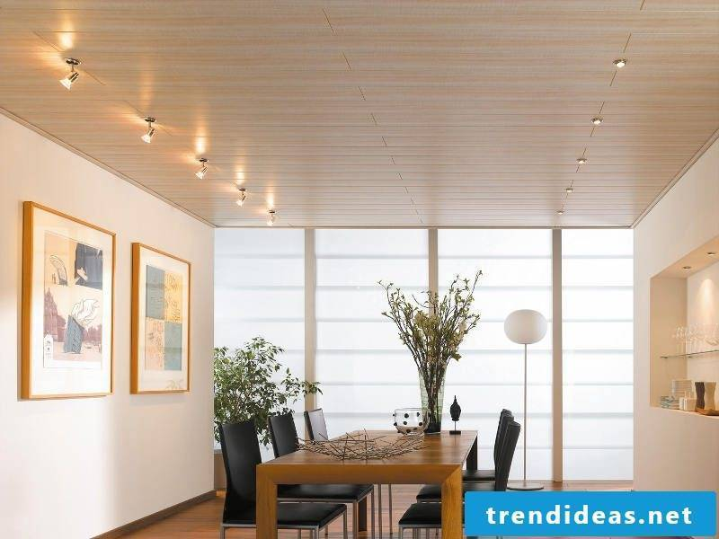 ceiling cladding plain