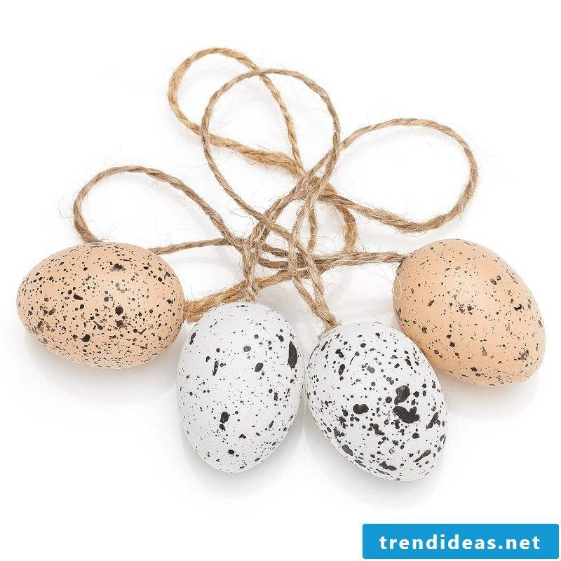 eggs speckled