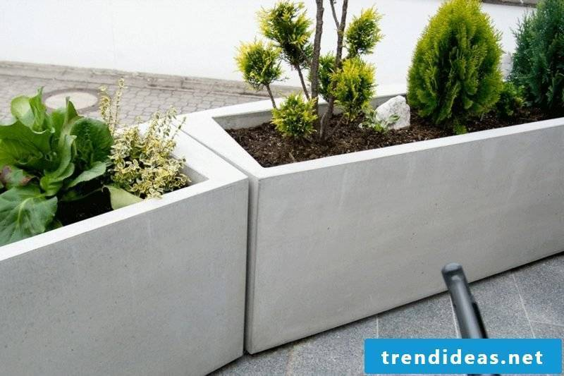 Planters made of concrete design ideas