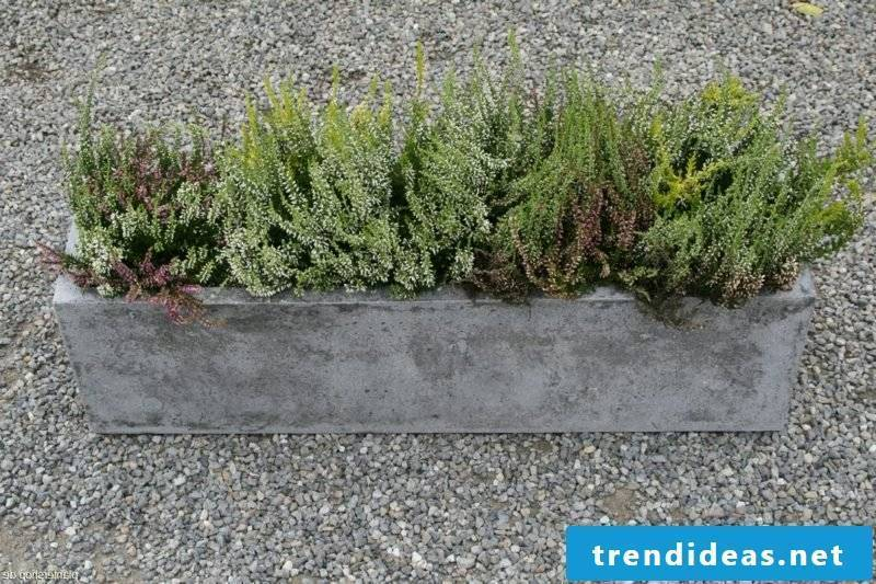 Concrete flower box
