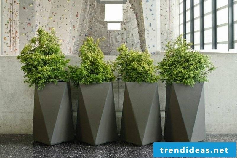 Planter concrete geometric shapes