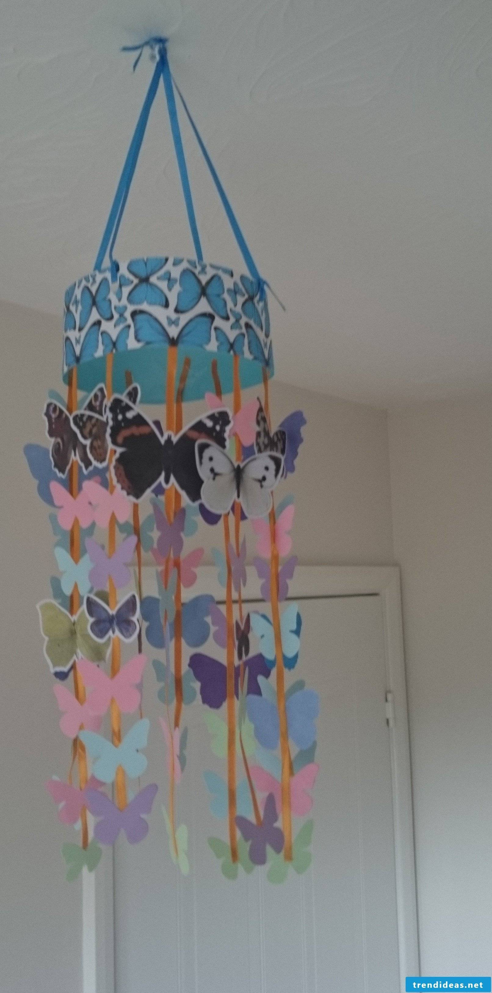 Butterflies always have a place at home