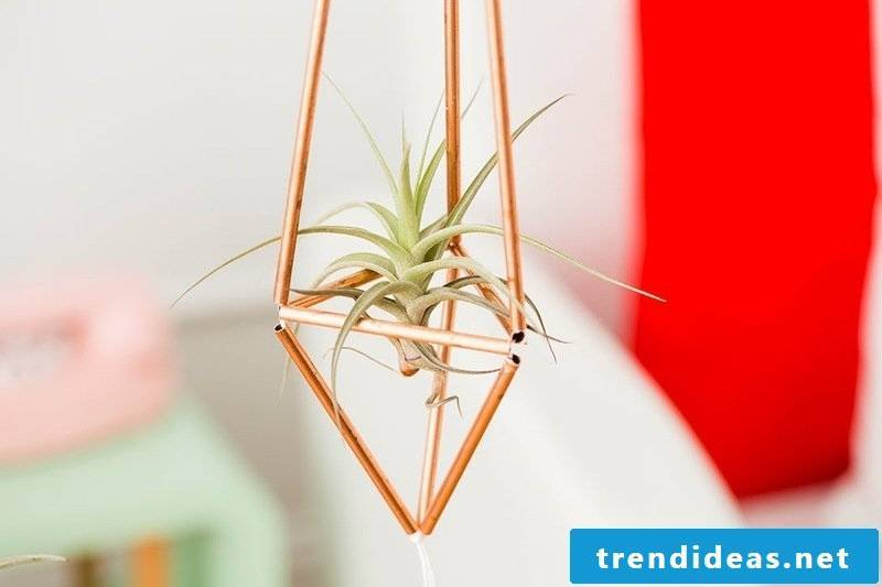 home decor flowerpot self-help guide diy living ideas