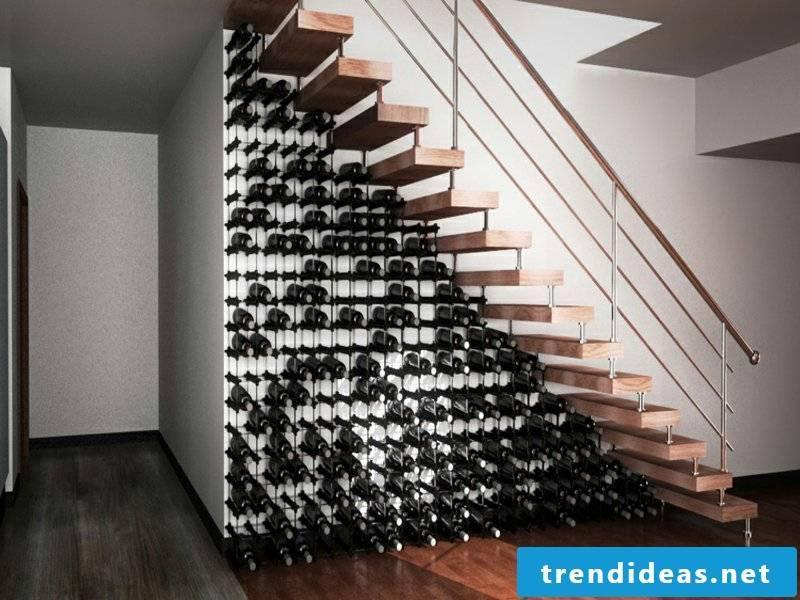 designer beautiful wine cellar under the stairs