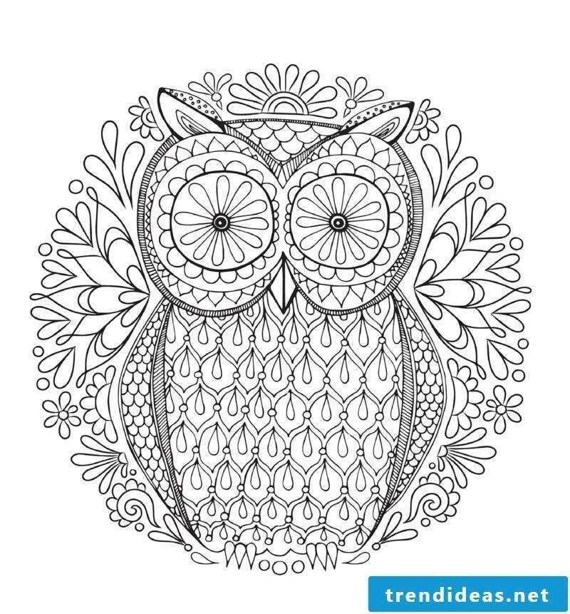mandala templates owl