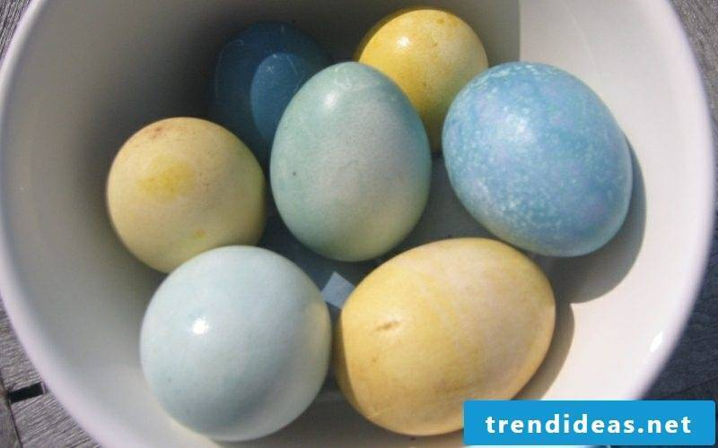 Easter eggs color with nature colors yellow and blue