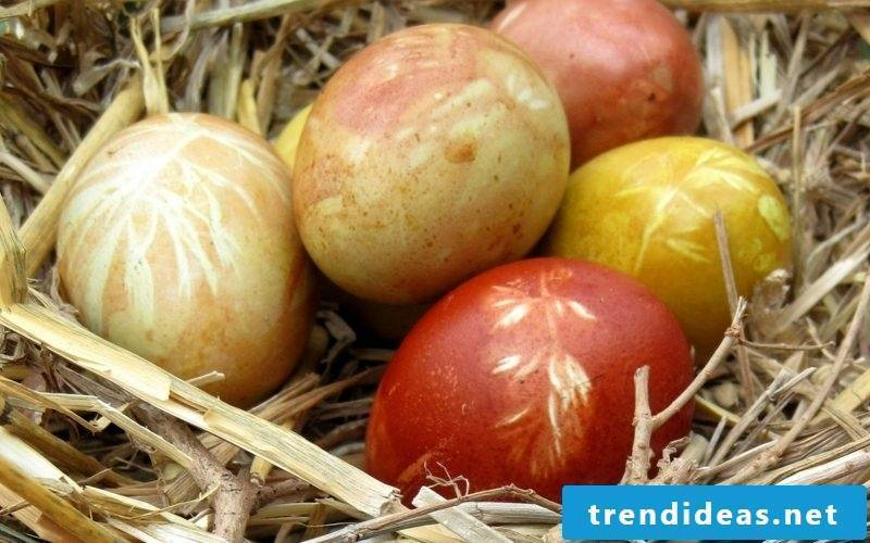 Easter eggs color with natural colors red and golden brown