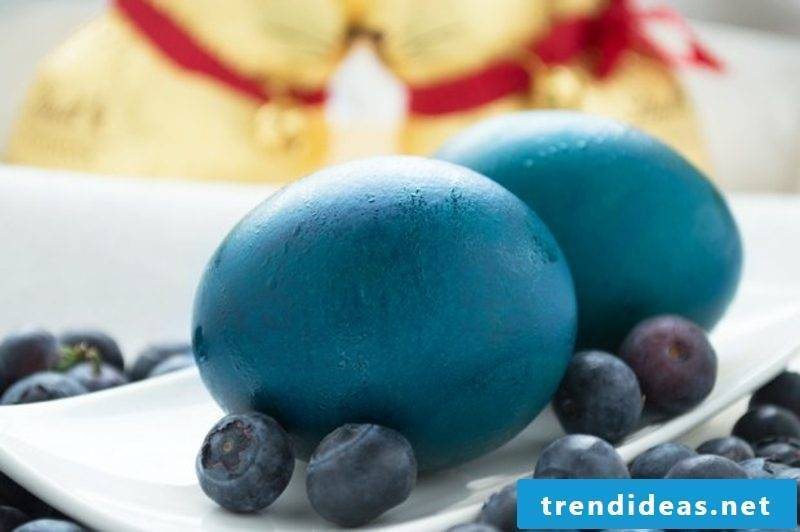 blue easter eggs dyeing with natural colors using blueberry juice