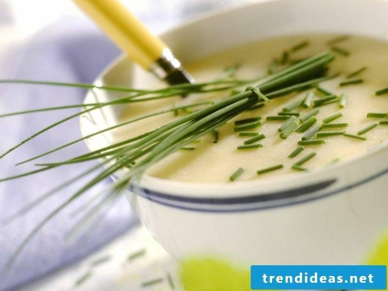 Good Friday Feoertag dishes creamy kohlrabi soup