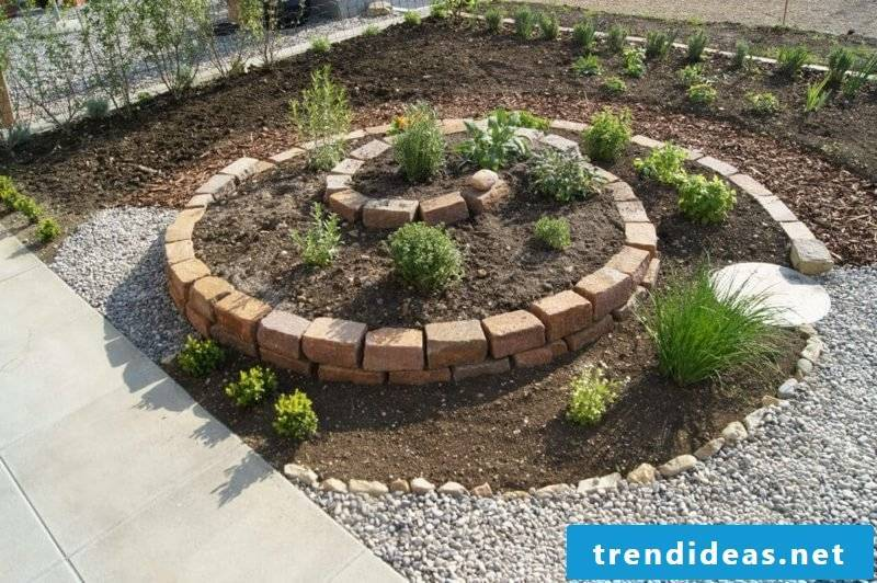 Create herbal spiral yourself