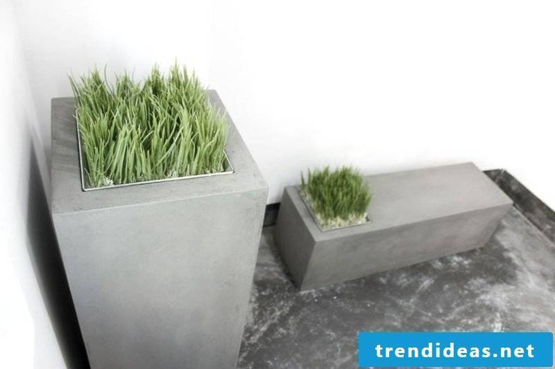 concrete planter lyon