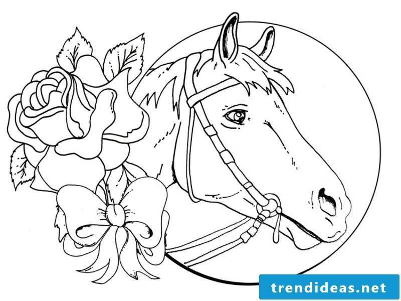 Coloring book horse moon and roses