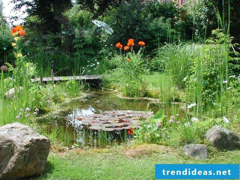 Gardening ideas pond gorgeous look