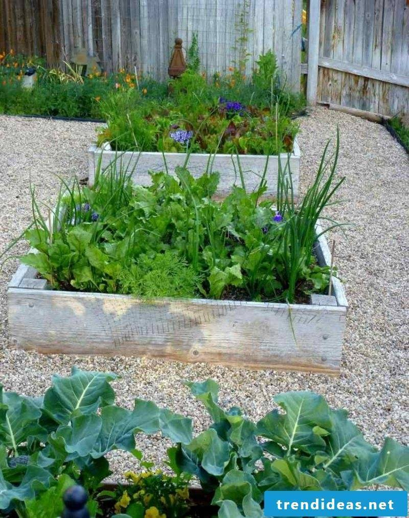 Garden design ideas raised beds