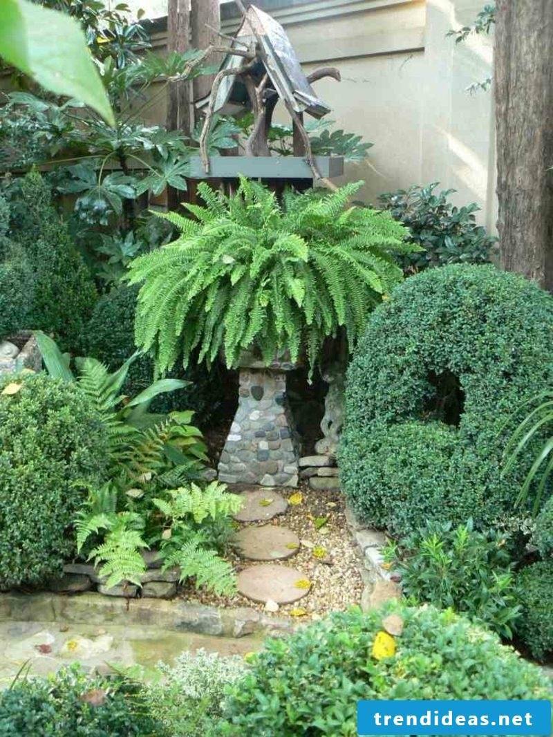 Gardening ideas Choice of plant species