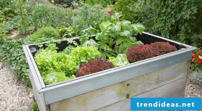 Garden design ideas raised bed wood