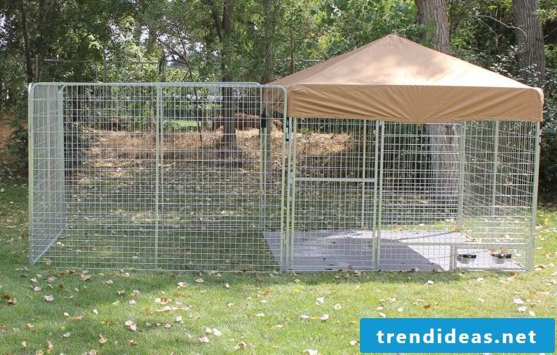 Build dog kennels yourself: What do you need for DIY!